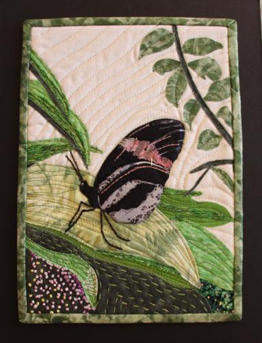 Angelwings by Joyce K Ferrie